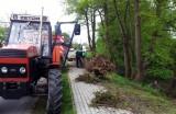 Brigáda na čistení brehov potoka