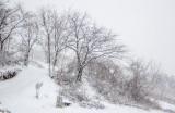 Snehová nádielka 8.,9.. 1. 2019