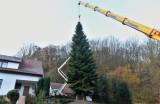 Vianočný strom z Horných Orešian